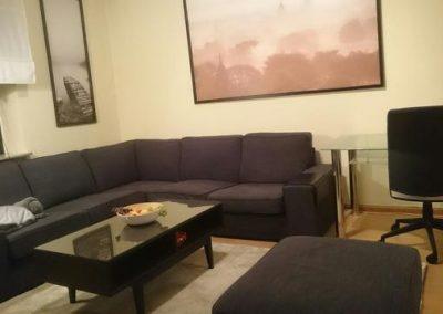 apt. 1 living room 2